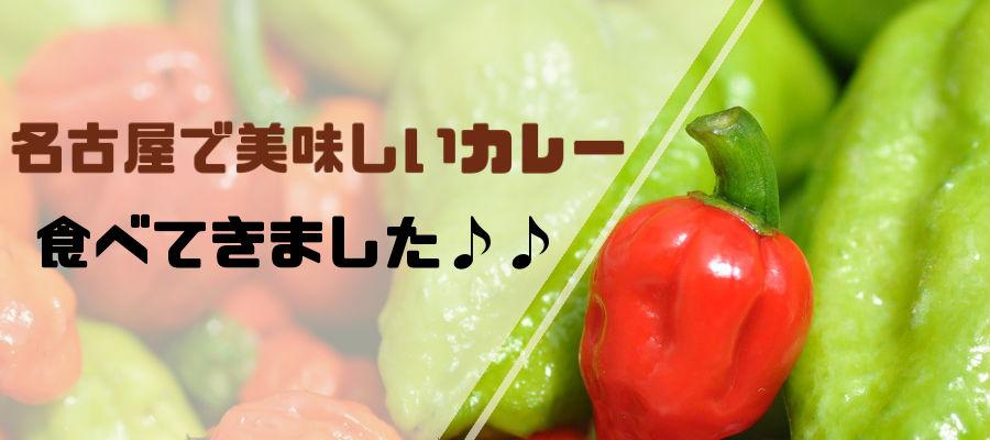 名古屋・金山のスープカレー屋さん「SOUP CURRY ISHIBA」のスープカレー